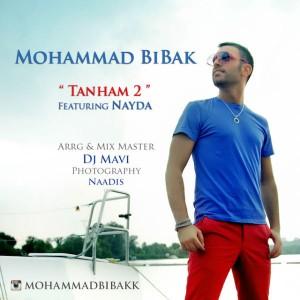 دانلود آهنگ جدید محمد بیباک و نایدا به نام تنهام 2