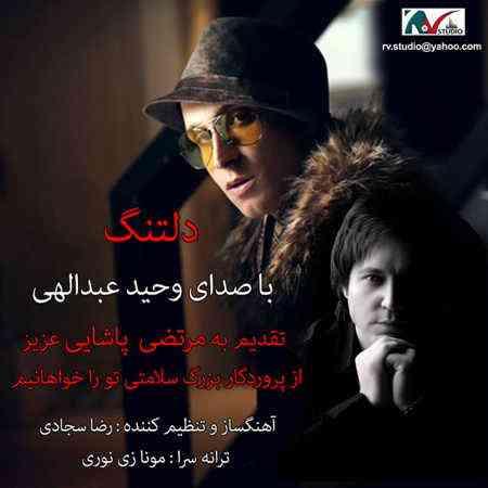 دانلود آهنگ جدید وحید عبداللهی به نام دلتنگ