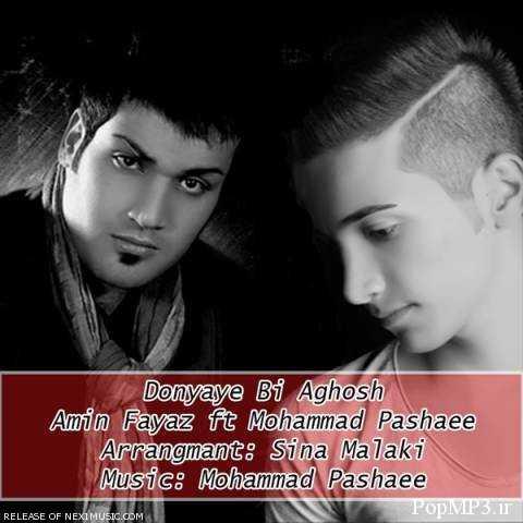 دانلود آهنگ جدید امین فیاض و محمد پاشایی به نام دنیای بی آغوش